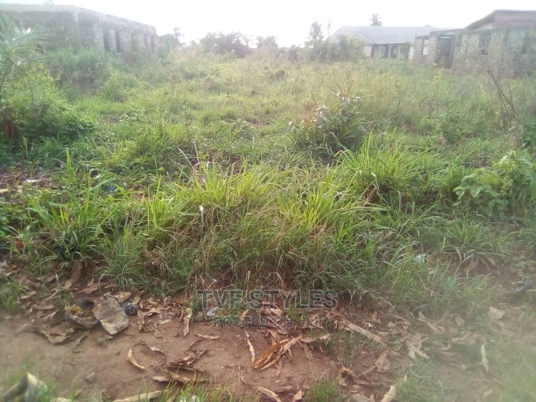 Archive: Plot of Land Available for Sale at Ikonga.