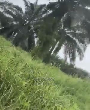 Agricultural and Industrial Land, Off Orogwe Onitsha Road   Land & Plots For Sale for sale in Imo State, Owerri
