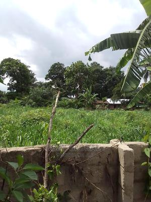 Land ( Buy and Build )   Land & Plots For Sale for sale in Imo State, Owerri