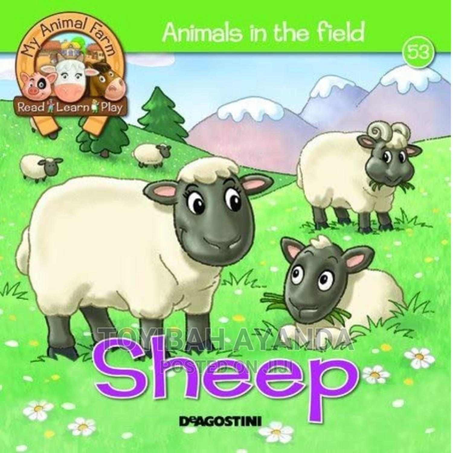 Archive: Animals in the Field (Sheep)