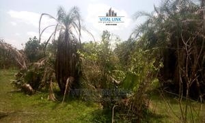 10 Acres for Farming Purposes or Estate Development for Sale | Land & Plots For Sale for sale in Osun State, Iwo