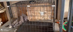 Collapsible Dog Cage | Pet's Accessories for sale in Abuja (FCT) State, Utako