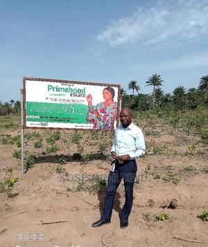 Primehood Estate | Land & Plots For Sale for sale in Oyo State, Olorunsogo