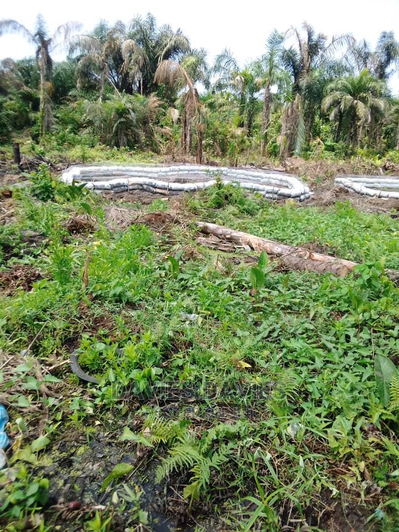 Affordable Land for Sale at Badagry | Land & Plots For Sale for sale in Badagry / Badagry, Badagry, Nigeria