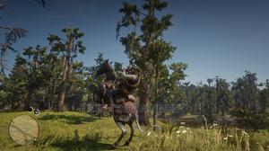 Red Dead Redemption 2 | Video Games for sale in Anambra State, Awka