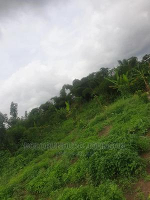 A Plot Of Land For Sale   Land & Plots For Sale for sale in Ondo State, Akure