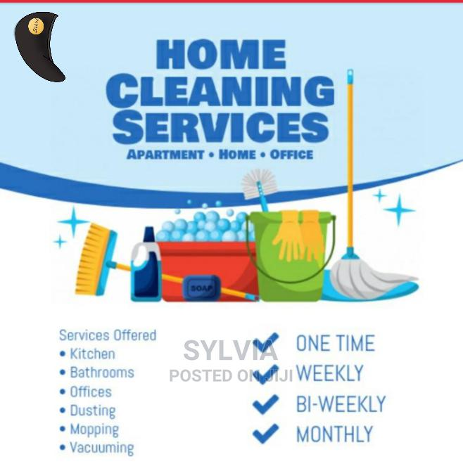 Keep Your Houses and Offices Sparkling Clean