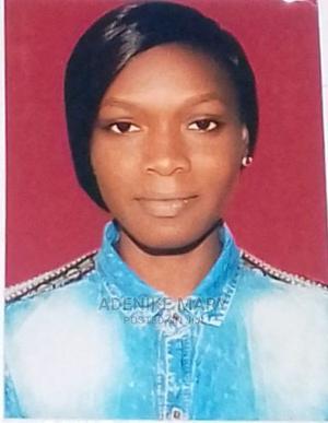 Customer Service Representative | Customer Service CVs for sale in Lagos State, Ojo