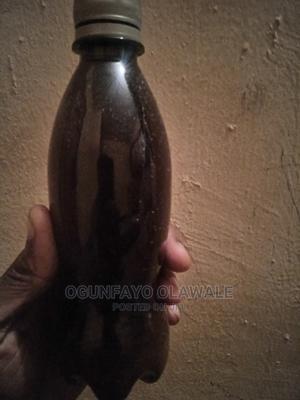 General Purpose Anti Venom / Anti Poison | Reptiles for sale in Oyo State, Ibadan