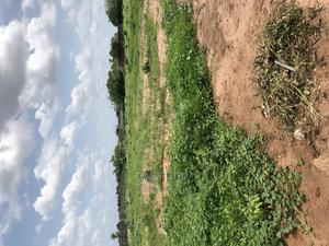 1 Hectare/ 20 Plots of Land With C of O Behind Shoprite | Land & Plots For Sale for sale in Imo State, Owerri