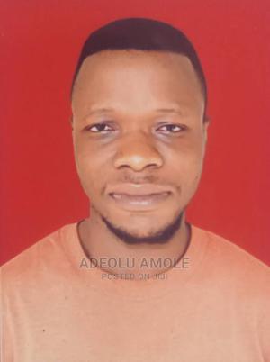 Office CV   Teaching CVs for sale in Oyo State, Ibadan