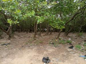 2.03ha Residential Land in Katampe Main for Sale | Land & Plots For Sale for sale in Katampe, Katampe (Main)