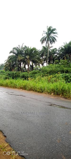 5 Plots of Land at Umuagwa Abia State   Land & Plots For Sale for sale in Abia State, Obi Ngwa