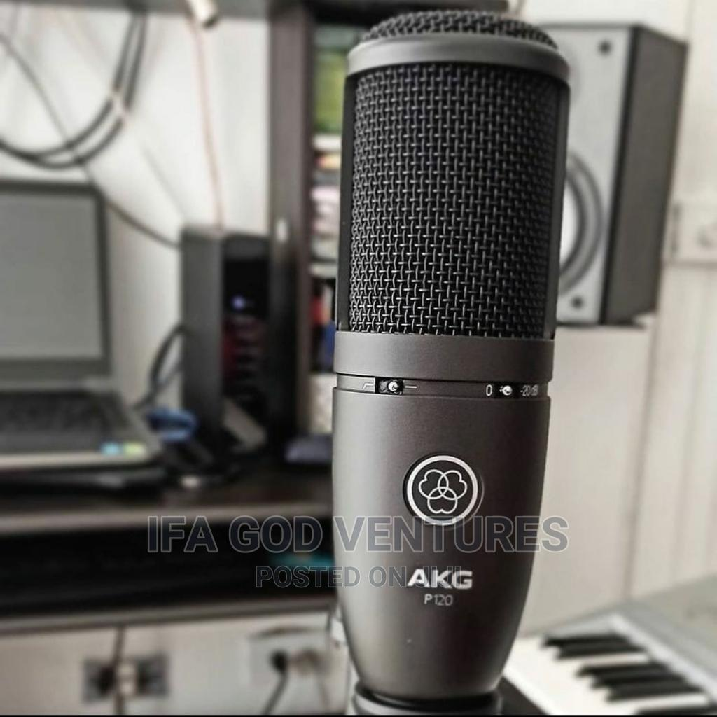 Archive: AKG Perception P120 Professional Studio Microphone