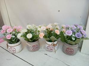 Beautiful Flower   Garden for sale in Lagos State, Lagos Island (Eko)
