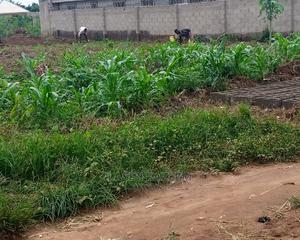 Full Plot of Land 60 by 120 | Land & Plots For Sale for sale in Lagos State, Ikorodu