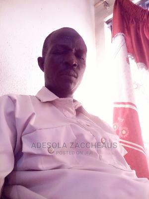 Mr Aina Zaccheaus | Accounting & Finance CVs for sale in Oyo State, Ibadan