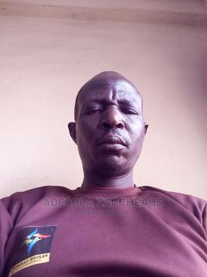 Mr Aina Zaccheaus Adesola | Accounting & Finance CVs for sale in Oyo State, Ibadan