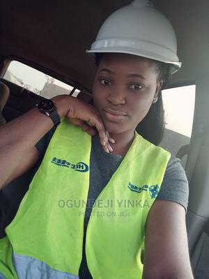 Civil Engineer   Construction & Skilled trade CVs for sale in Lagos State, Surulere
