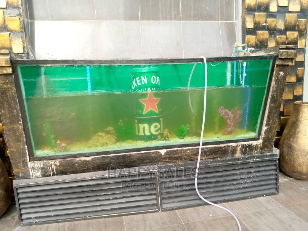 Archive: Hotel Aquarium