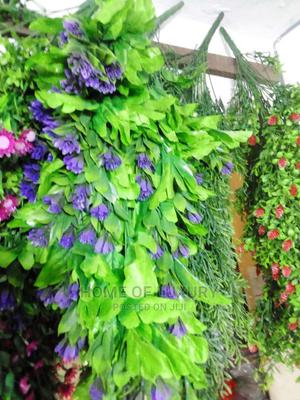 New Dropping Flower   Garden for sale in Kano State, Gwarzo