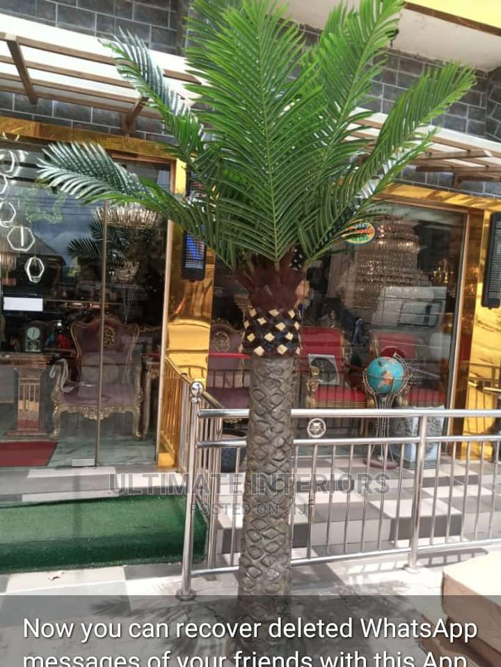 Decorative Palm Tree