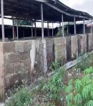 Poultry, Piggery, Fishery Farm, Strategically Located | Commercial Property For Sale for sale in Oyo State, Ogbomosho South