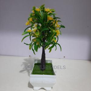 Tabletop Bonsai Flower for Sale at Bethelmendel   Garden for sale in Lagos State, Ikeja