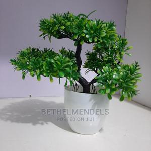 Mini Tabletop Flower for Sale   Garden for sale in Lagos State, Ikeja