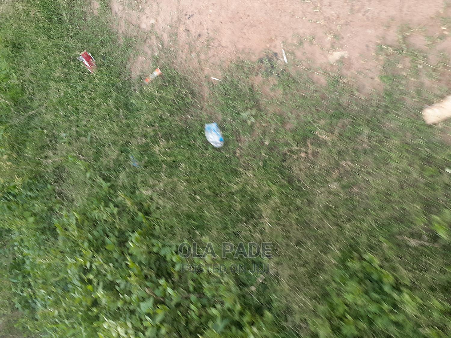 A Residential Plot of Land With Blue Survey   Land & Plots For Sale for sale in Ibadan, Oyo State, Nigeria