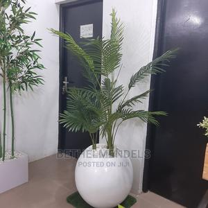 Decorative Palm Plant With Fiberglas Pot Best for Mall Decor   Garden for sale in Lagos State, Ikeja