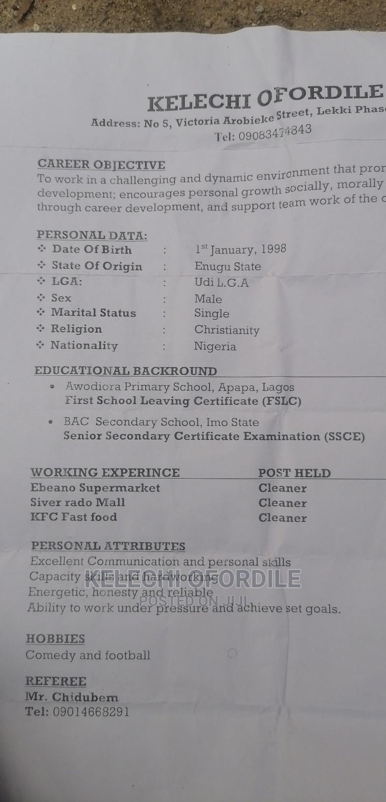 Housekeeping Cleaning CV