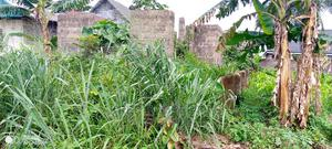 Table Dryland in the City | Land & Plots For Sale for sale in Rivers State, Obio-Akpor