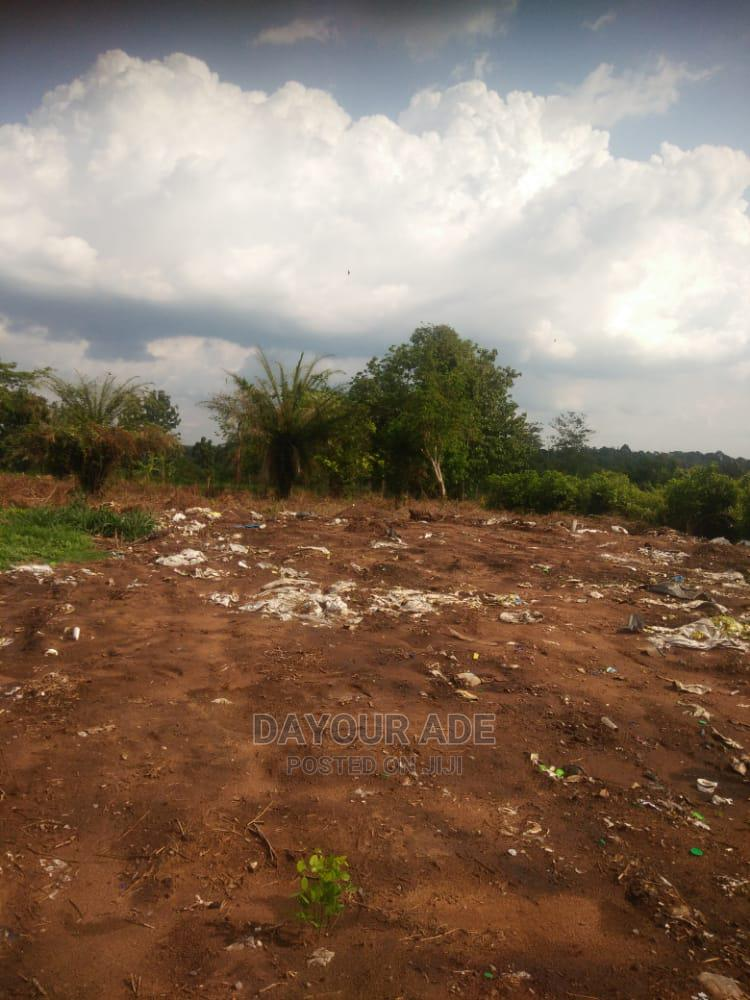 Archive: One Acre of an Industrial Farmland