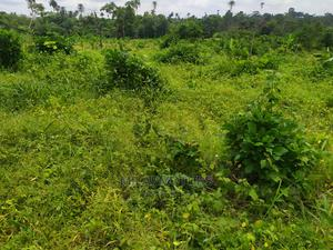 6 Plot of Land | Land & Plots For Sale for sale in Kwara State, Asa