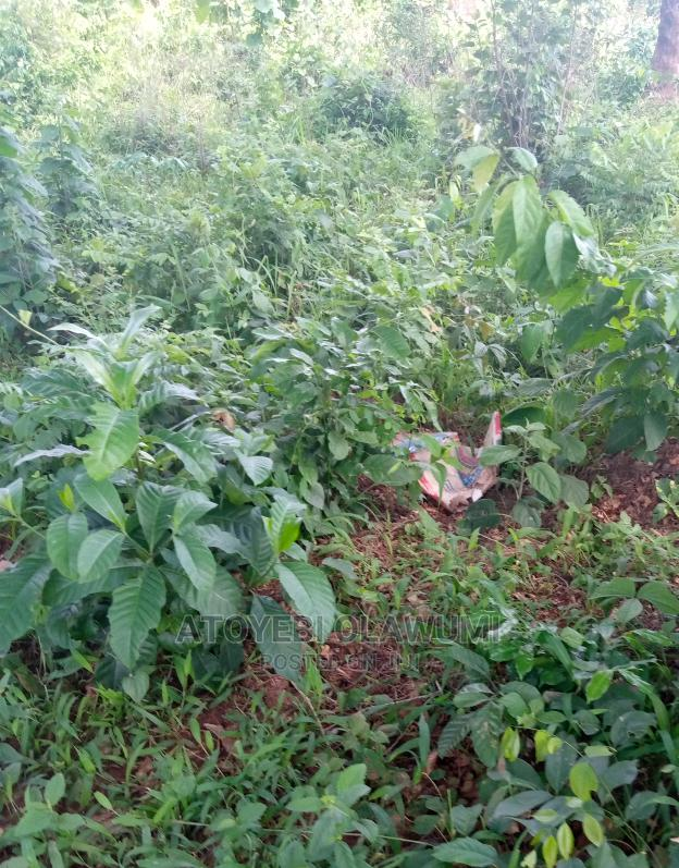 Plot of Land 90 X 62 Ft for Sale