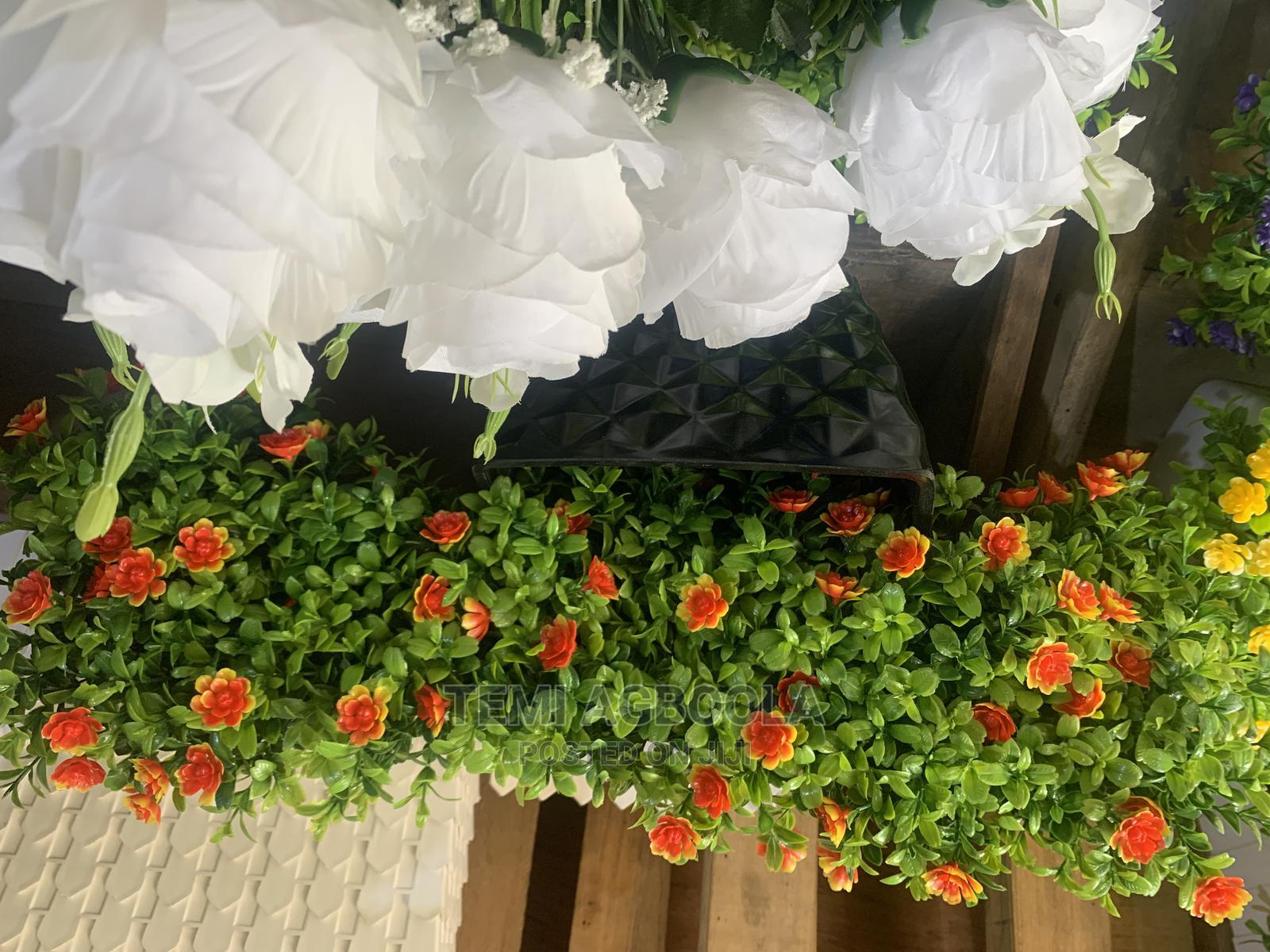 Fence Plant