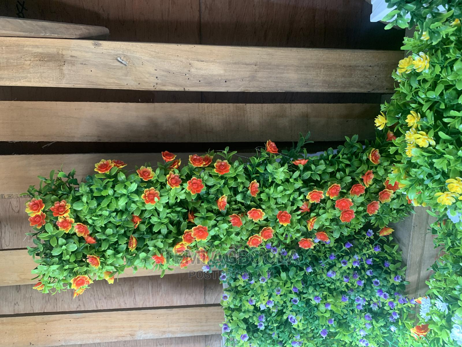 Fence Plant   Garden for sale in Ogba, Lagos State, Nigeria