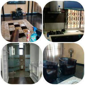 Professional Cleaning, Funmigation , Janitorial Services | Cleaning Services for sale in Lagos State, Ikeja