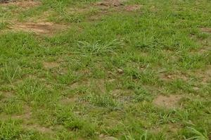 Land for Sale | Land & Plots For Sale for sale in Lagos State, Abule Egba