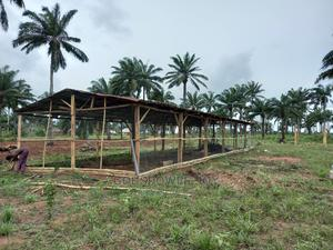 Poultry Farm for Sale | Commercial Property For Sale for sale in Lagos State, Badagry