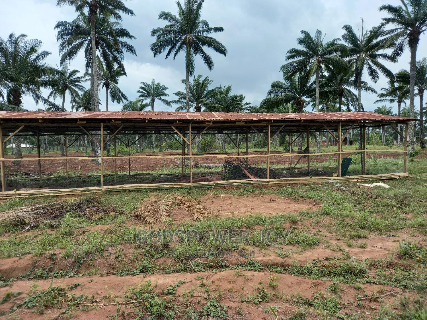Poultry Farm for Sale   Commercial Property For Sale for sale in Badagry, Lagos State, Nigeria