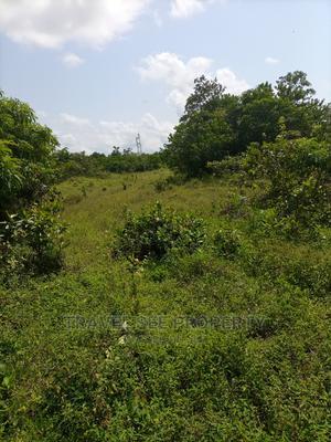 Gazetted Land's Survey New International Airport Ibeju Lekki | Land & Plots For Sale for sale in Ajah, Off Lekki-Epe Expressway