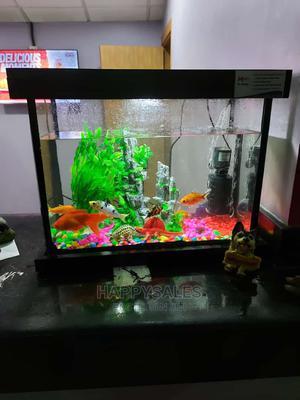 Minin Aquarium   Fish for sale in Lagos State, Surulere