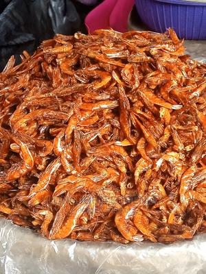 Oporo Fish   Fish for sale in Rivers State, Port-Harcourt