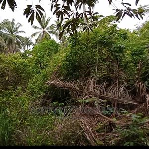 20 Acres of Land for Residential Estate | Land & Plots For Sale for sale in Oyo State, Lagelu