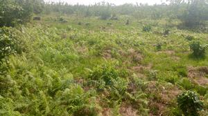 A Full Plot of Land for Lease | Land & Plots for Rent for sale in Ikorodu, Igbogbo