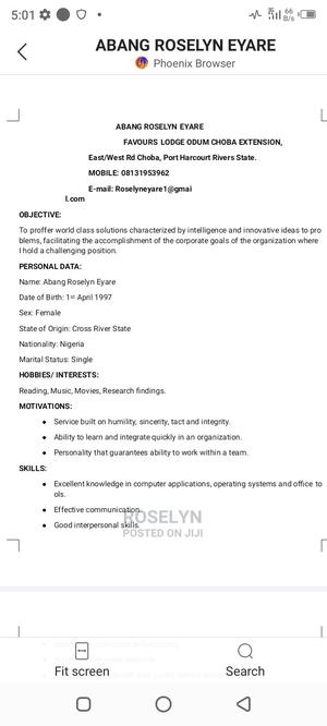 Logistics Agents Job | Logistics & Transportation CVs for sale in Lagos State, Isolo
