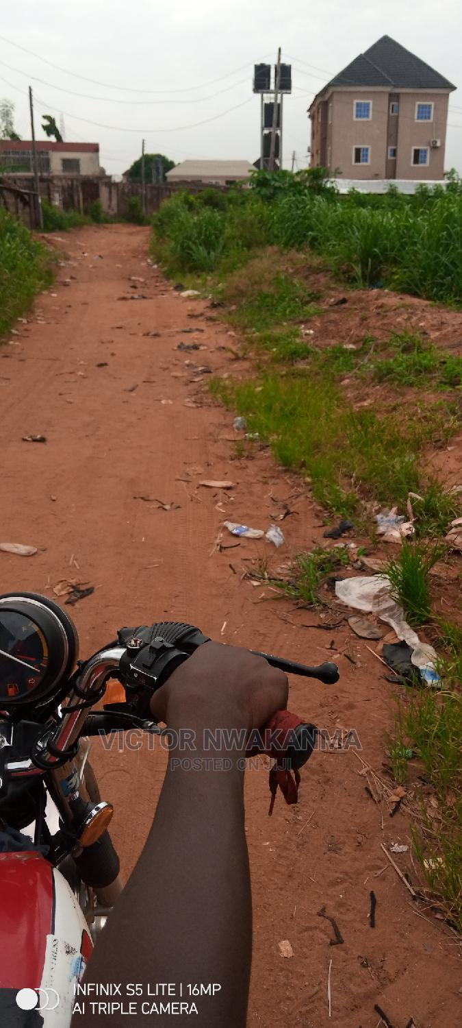 Archive: 100 by 100 Plot of Land for Sale Across Okpanam Express