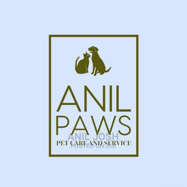 Archive: Pet Care Services and Dog Training